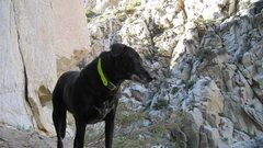 "Rock Climbing Photo: Zacky Boy (a.k.a., ""Old Man"")"