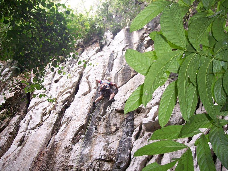 "Rock Climbing Photo: Eric Coffman leading ""Sadako"" #8"