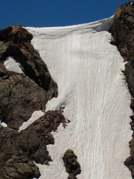 Rock Climbing Photo: Snow Leopard 2012