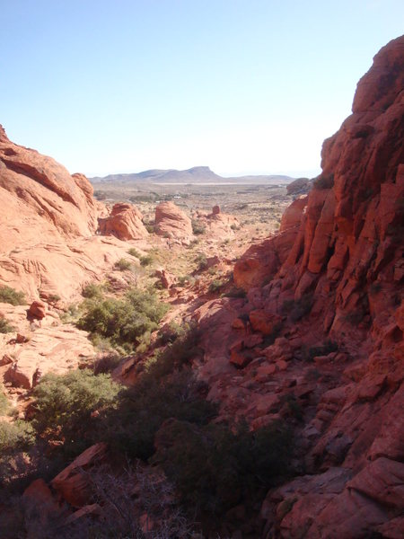 Rock Climbing Photo: About half way up the approach to Cut Your Teeth. ...