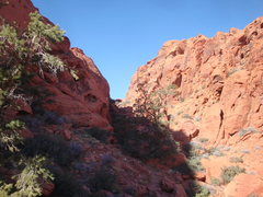 Rock Climbing Photo: Just past the half way point of the approach to Cu...