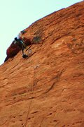 Rock Climbing Photo: Cleaning Cow Lick Co.