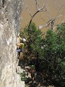 Rock Climbing Photo: Climber on Dallas Route.