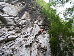 "Rock Climbing Photo: Patrick nearing the top of ""Haight"" 5.9"