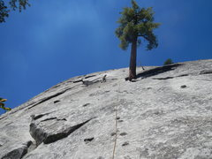 Rock Climbing Photo: Setting up a TR anchor for Unnamed 5.9 sport route...