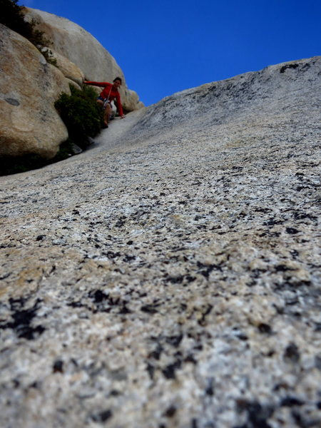 Rock Climbing Photo: Erica descends the slabs on Stately Pleasure Dome....