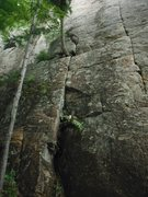 Rock Climbing Photo: Bottom half/start of Crimps Are For Pimps