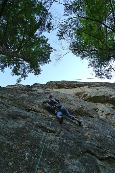 Rock Climbing Photo: Will Carey on the sustained crimps of Luna.