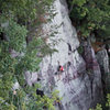 Reinke on Lost Face Overhang.