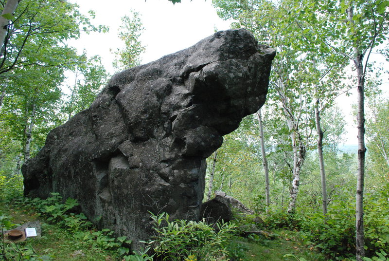 Rock Climbing Photo: Most recognizable shot of the Bluff Boulder