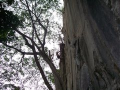 "Rock Climbing Photo: Eric Coffman near the anchors onsighting ""por..."