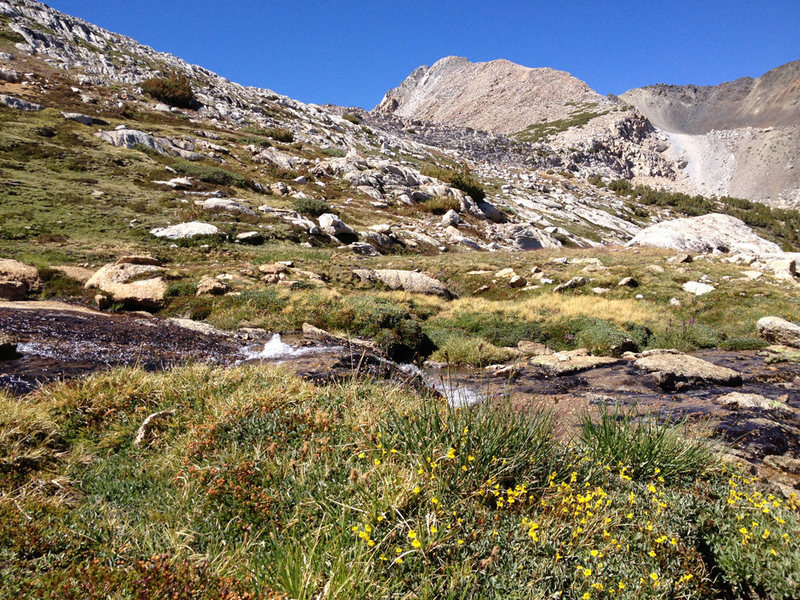 Rock Climbing Photo: One of the streams that cuts through a meadow just...
