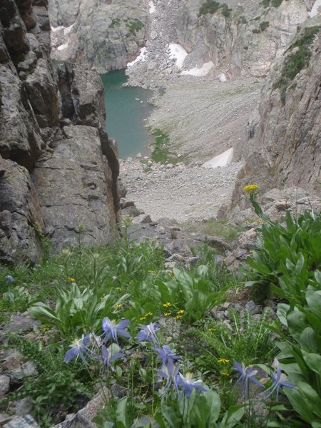 Rock Climbing Photo: Columbines on July 29, 2012. Sky Pond below.