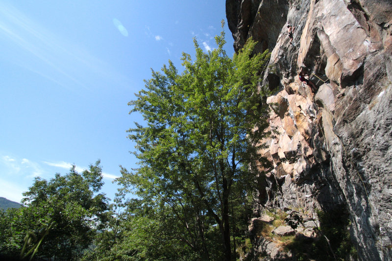 Rock Climbing Photo: main cliff in the summer time... chloe is on Polly...