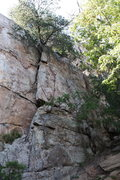 Rock Climbing Photo: Practice Wall  Mike's Crack (5.5) trad  Crowders M...