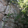 Practice Wall<br> <br> So It Goes (5.8+) trad<br> <br> Crowders Mountain State Park, North Carolina