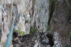 Rock Climbing Photo: Two Pitch Wall  Matthew Stephens cleans Two Pitch ...