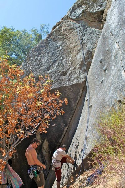Rock Climbing Photo: thin seam in right of photo taken by Silvana Hidal...