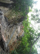 Rock Climbing Photo: Looking up the line of Jewel of the Mekong (5.10-)...