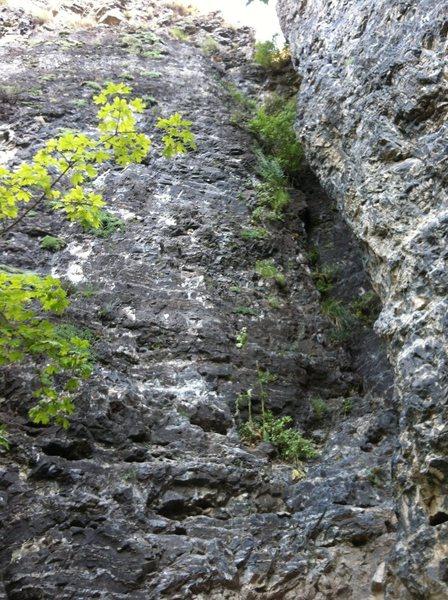 Rock Climbing Photo: Unknown 5.6