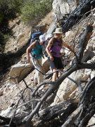Rock Climbing Photo: Slogging up the scree slope to Crystal Lake Crag.