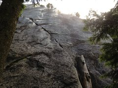 Rock Climbing Photo: Up the stump and left crack until you reach a grea...