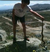 Rock Climbing Photo: Rattler