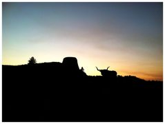 Rock Climbing Photo: Sunset , Devils Tower.