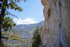 Rock Climbing Photo: Bill on Gun Tower.