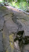 Rock Climbing Photo: The route starts in the yellow patch and slants up...