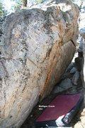 Rock Climbing Photo: Mulligan Crack Topo