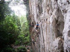 "Rock Climbing Photo: Elna Coffman following ""Natre"" 5.11b"