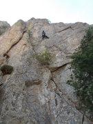 Rock Climbing Photo: Tom Jensen heading to the crux on Hound Dog, BC Be...