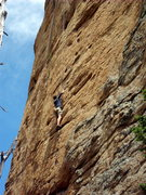 Rock Climbing Photo: Making moves on Andrology.