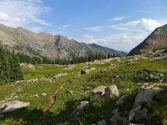 Rock Climbing Photo: View back toward the trailhead.