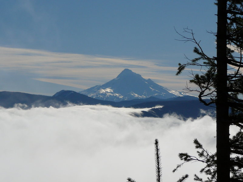 Rock Climbing Photo: Mount Hood from the base