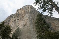 Rock Climbing Photo: El Cap 2012