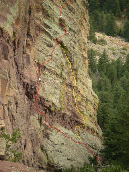 Rock Climbing Photo: Belladonna in yellow.