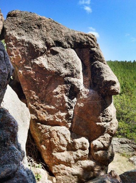 Rock Climbing Photo: -Decapitation Boulder-