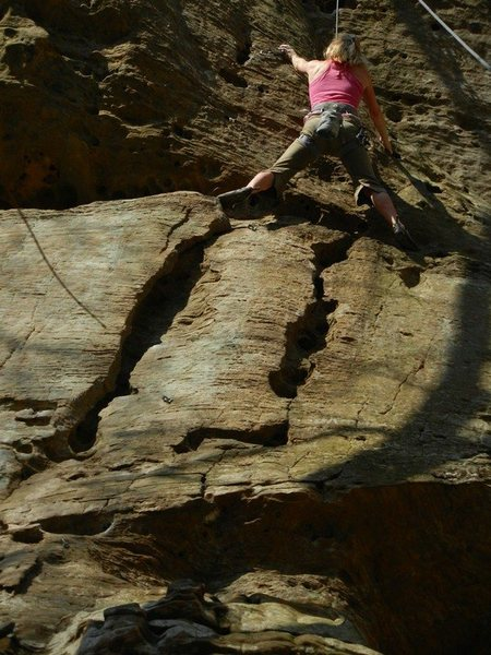 muir valley - Red River Gorge