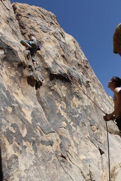 Rock Climbing Photo: Fun TR for new climbers