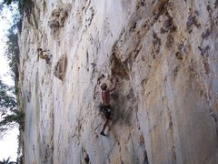 "Rock Climbing Photo: Eric Coffman ""itchy flutterby"" 5.11b"