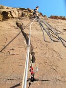 Rock Climbing Photo: Looking for Bighorns across canyon while belaying ...