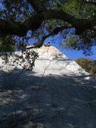 Rock Climbing Photo: looking at climb from belay boulder