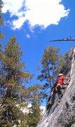 Rock Climbing Photo: Puppy Crack  -Caesar Medina