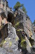 Rock Climbing Photo: Chubby Hubby