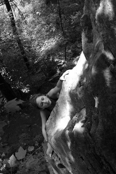 Rock Climbing Photo: chloe taking a ride on the hinterland highway...