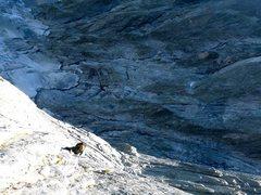 Rock Climbing Photo: Swimming up a sea of granite