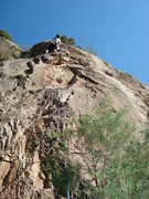 Rock Climbing Photo: Above the 4th bolt...quite a few unprotected moves...