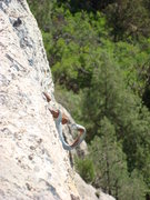 Rock Climbing Photo: Everyone should thank whoever did the new work her...